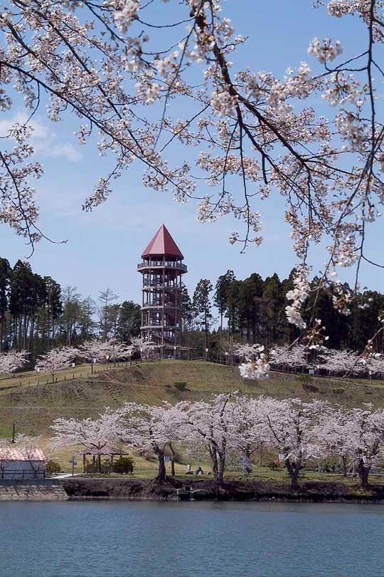 おいらせ町商工会|下田公園春祭り